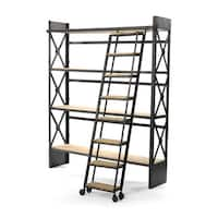 Bookcase and Ladder Set