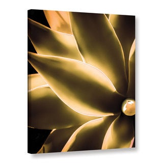 Richard James's 'Incandescence' Gallery Wrapped Canvas