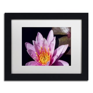 Kurt Shaffer 'Pink Water Lily' Matted Framed Art