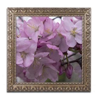 Kurt Shaffer 'Cherry Blossom Cluster' Ornate Framed Art