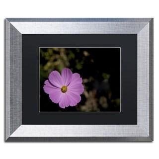 Kurt Shaffer 'Pink Cosmos Flower' Matted Framed Art