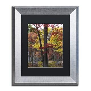 Kurt Shaffer 'Incredible Shades of Autumn' Matted Framed Art