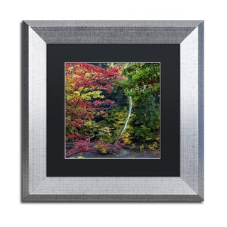 Kurt Shaffer 'All the Colors of October in Ohio' Matted Framed Art