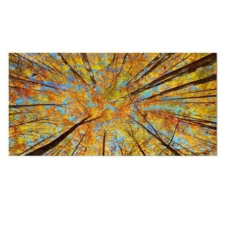 Designart 'Tree Tops in Autumn Forest' Trees Photo Metal Wall Art