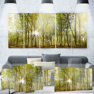 Designart 'Green Forest Panoramic View' Landscape Photo Metal Wall Art