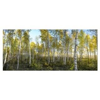 Designart 'Green Autumn Trees' Landscape Photo Metal Wall Art