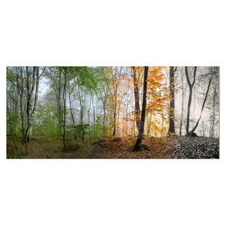 Designart 'Morning Forest Panorama' Landscape Photo Metal Wall Art