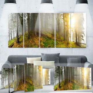 Designart 'Early Morning Sun in Forest' Landscape Photo Metal Wall Art