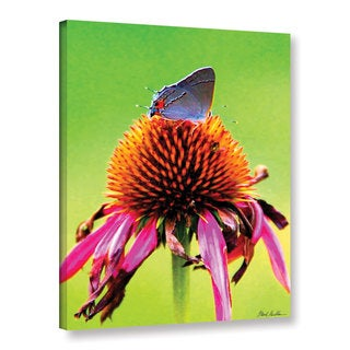 Mark Goodhew's 'Flower and the Butterfly' Gallery Wrapped Canvas