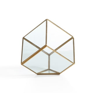 Danya B 9.5-inch Cube Brass and Glass Terrarium
