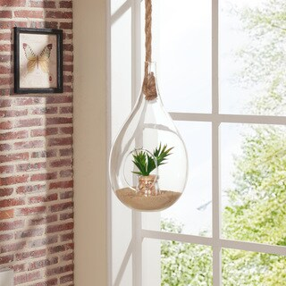 Danya B Teardrop Hanging Glass Planter with Rope