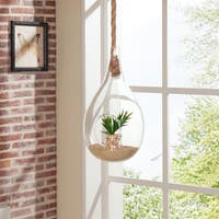 Danya B. Teardrop Hanging Glass Planter with Rope