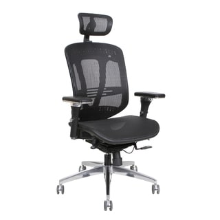 Thornton's Office Supplies ErgoExec Black Mesh Metal/Plastic Swivel Executive Office Chair