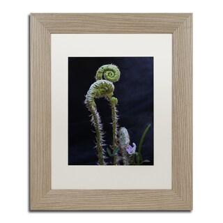 Kurt Shaffer 'Fern and Flower' Matted Framed Art