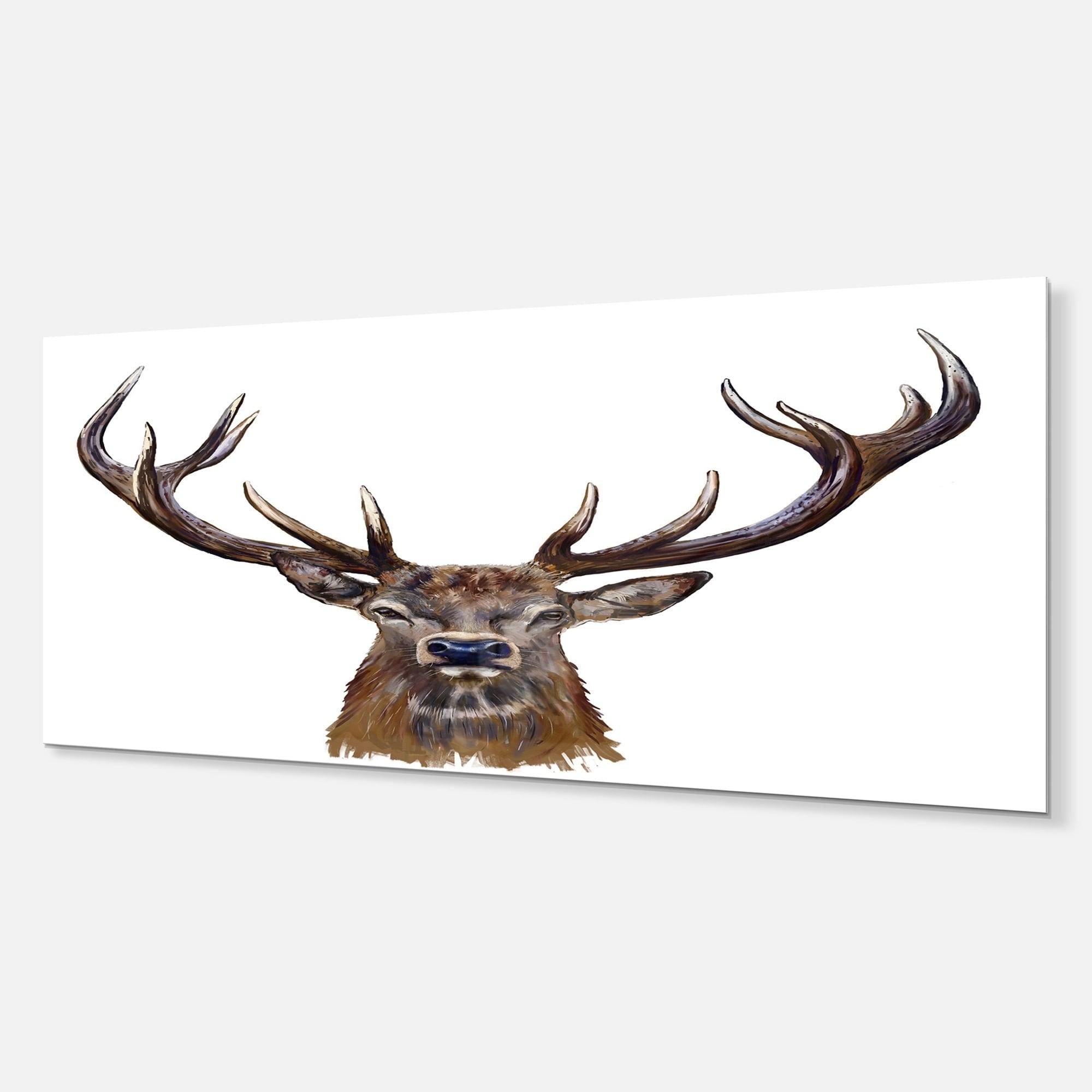 Designart Deer Head In Front Illustration Animal Metal Wall Art Overstock 11867160