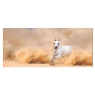 Designart 'Arabian Horse in Desert Storm' Photography Metal Wall Art