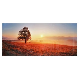 Designart 'Tree and Sun' Landscape Photography Metal Wall Art