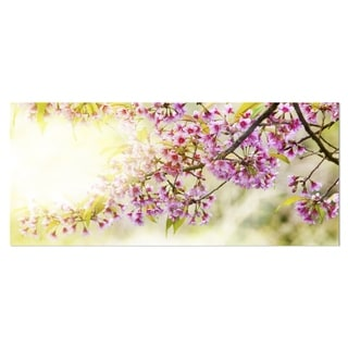Designart 'Blooming Cherry Flowers' Floral Photography Metal Wall Art