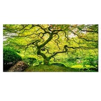 Designart 'Amazing Green Tree' Photography Metal Wall Art