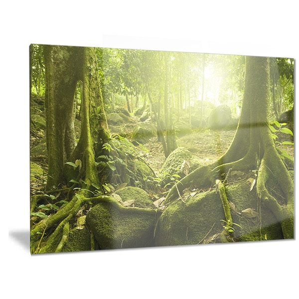 Designart \'Green Forest with Sun\' Landscape Photo Metal Wall Art ...