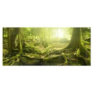 Designart 'Green Forest with Sun' Landscape Photo Metal Wall Art