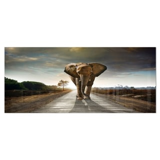 Designart 'Single Walking Elephant' Photography Metal Wall Art