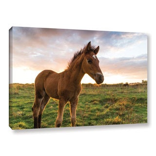 Andrew Lever's 'Foaly' Gallery Wrapped Canvas