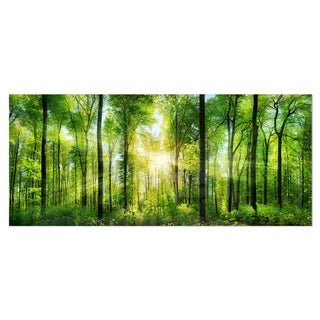 Designart u0027Forest with Rays of Sun Panoramau0027 Landscape Metal Wall Art & Shop Green Metal Art | Discover our Best Deals at Overstock.com