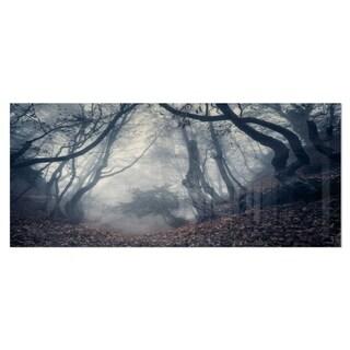 Designart 'Vintage Path in Autumn Forest' Landscape Photo Metal Wall Art