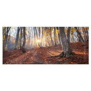 Designart 'Crimean Mountains Autumn Trees' Landscape Photo Metal Wall Art