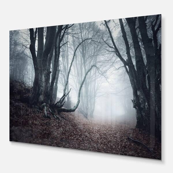 Designart Mysterious Fairytale Foggy Wood Landscape Photo Metal Wall Art Overstock 11871178