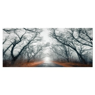 Designart 'Mystic Road in Forest' Landscape Photo Metal Wall Art