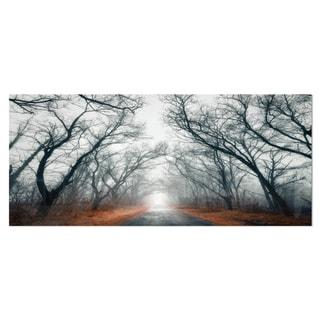 Designart 'Mystic Road in Forest' Landscape Photo Metal Wall Art