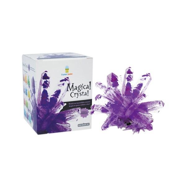 Tedcotoys Purple Magical Crystal Grow-kit