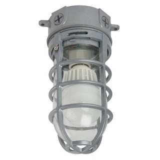 Lithonia Lighting Ceiling-Mount 1-light Outdoor Hanging Grey LED Vapor Tight