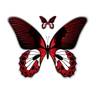 Pilot Automotive 6-inch x 8-inch Red Butterfly Vehicle Car Decal Stickers
