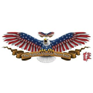 Pilot Automotive 6-inch x 18-inch USA Spread Eagle Vehicle Car Decal Stickers