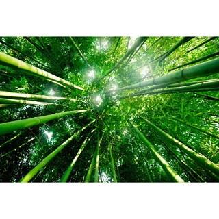Cortesi Home 'In My World' Green Tempered-glass Wall Art