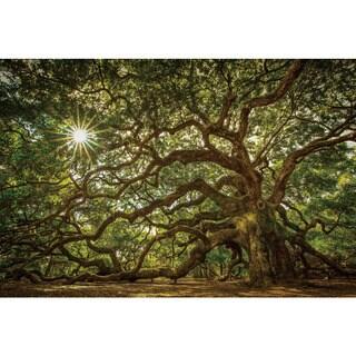 Benjamin Parker 'Wisdom Tree' Tempered Art Glass