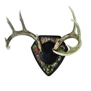 Allen Big Buck Mossy Oak Trophy Mounting Kit