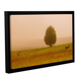 Tom Croce's 'Bucks in the National Park' Gallery Wrapped Floater-framed Canvas