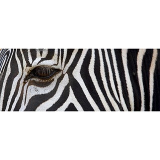 Cortesi Home 'Zebra' 16-inch x 48-inch Tempered Glass Wall Art