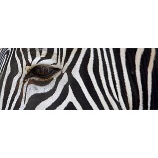 Cortesi Home 'Zebra' 16-inch x 48-inch Tempered Glass Wall Art