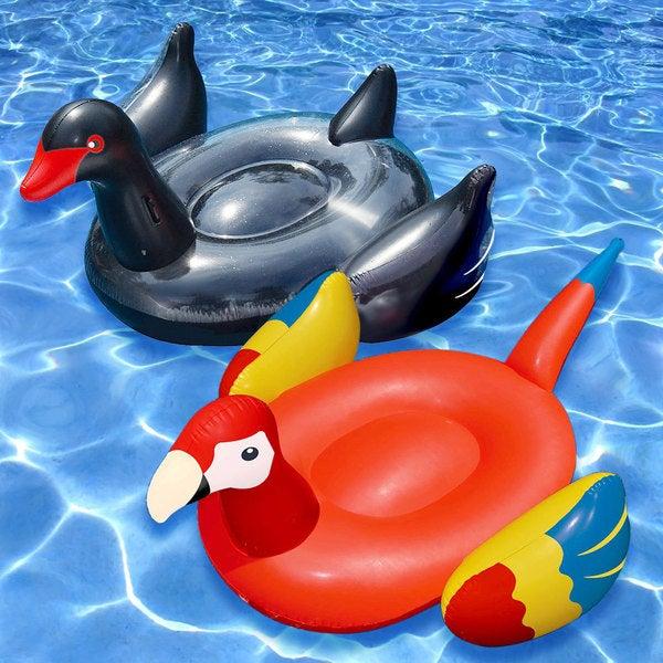 Swimline Giant Black Swan and Parrot (Set of 2)
