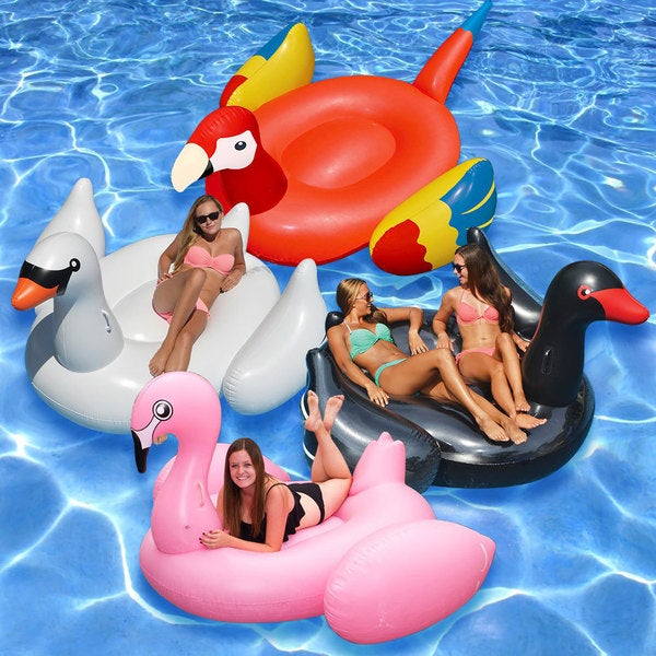 Jumbo and Giant Birds Inflatable Float (Pack of 4)