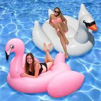 Jumbo and Giant Birds Inflatable Floats (Set of 2)