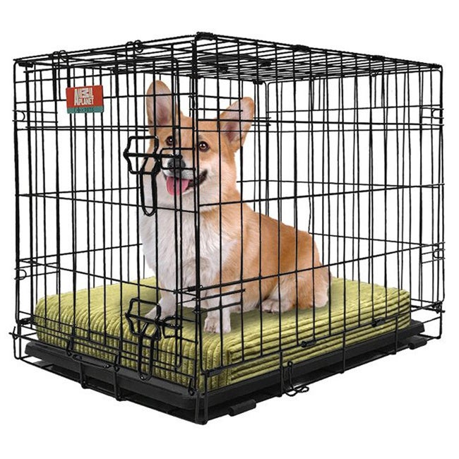 Animal Planet Collapsible Metal Crate with Removable Tray...