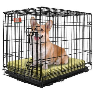 Animal Planet Collapsible Metal Crate with Removable Tray