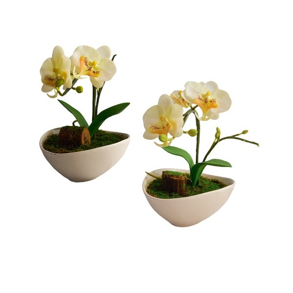 Red Vanilla Phalaenopsis White Artificial Silk Orchid With White Ceramic Base (Set of 2) - N/A