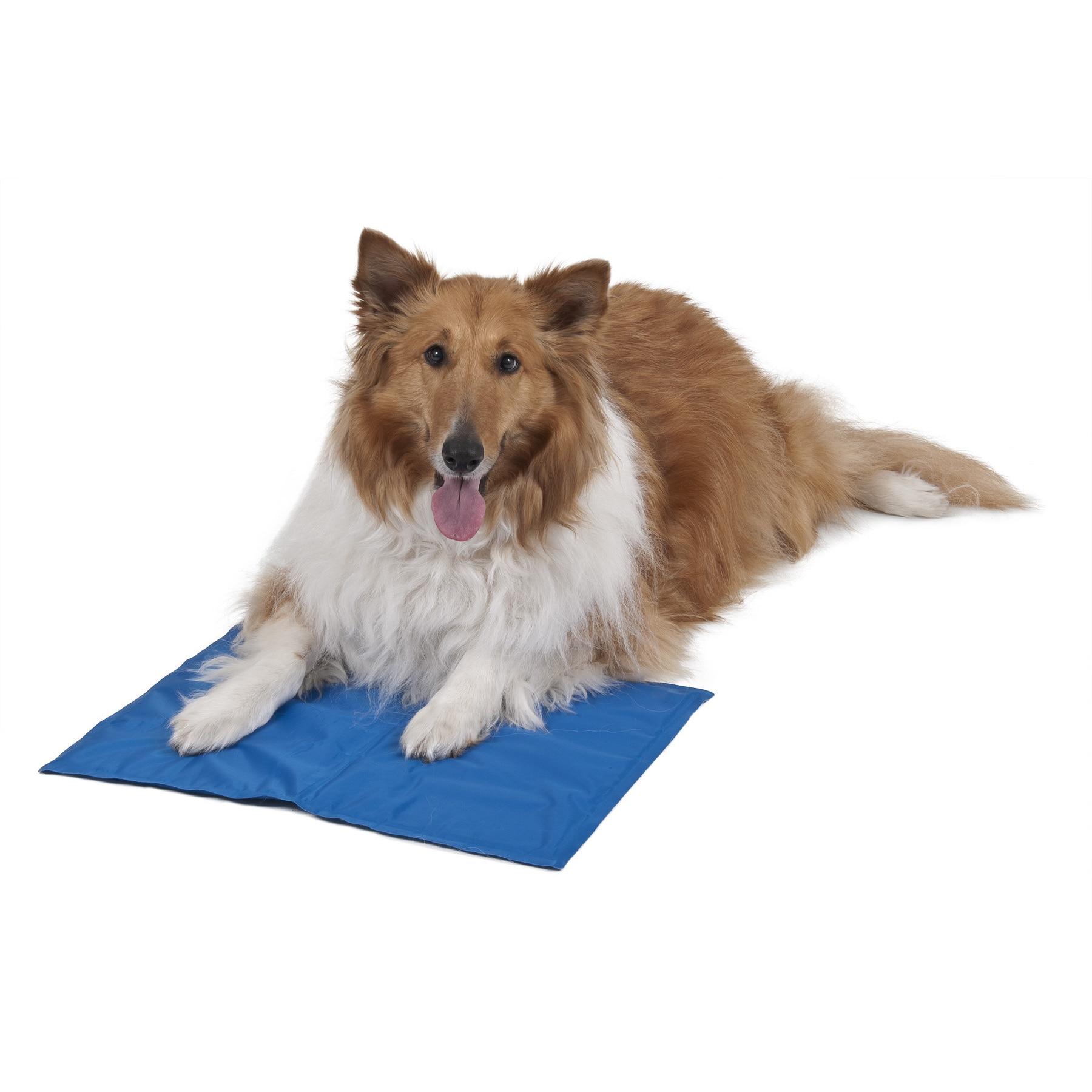 Aspen Pet Aspen Blue Nylon Pet Cooling Mat (Blue)